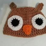 Hootie the Wise Owl Beanie Hat Crochet Pattern