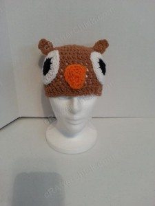 Hootie the Wise Owl Beanie Hat Crochet Pattern Zoom Out View