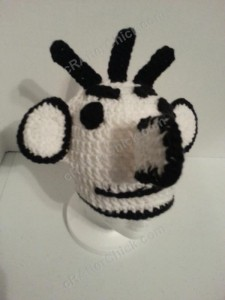 Diary of a Wimpy Kid Roderick Character Hat Crochet Pattern (2)
