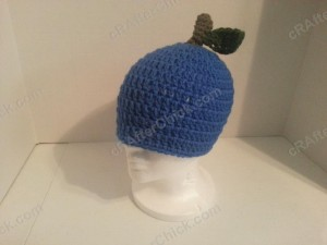 Jenna's Easy Blue Apple Beanie Hat Crochet Pattern (3)
