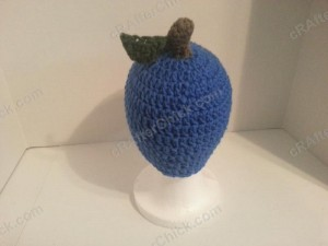 Jenna's Easy Blue Apple Beanie Hat Crochet Pattern (5)