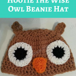 Hootie the Wise Owl Beanie Hat Crochet Pattern