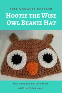 Hootie the Wise Owl Beanie Hat Free Crochet Pattern