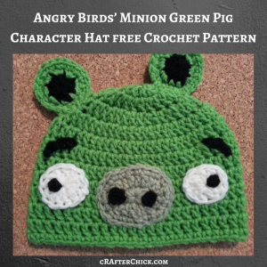 Angry Birds' Minion Green Pig Character Hat Free Crochet Pattern
