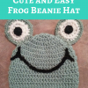 Cute and Easy Frog Beanie Hat Free Crochet Pattern
