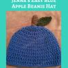Jenna's Easy Blue Apple Beanie Hat Free Crochet Pattern