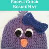 Rochelle's Pretty Purple Chick Beanie Hat Free Crochet Pattern